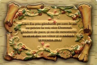 Magnet dreptunghiular - Ieremia 29:11