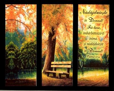 Tablou pe catifea - Psalmul 27:14
