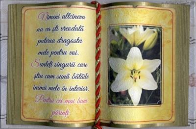 Carte decorativa mica - Pentru cei mai buni parinti...