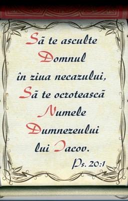 Pergament - Psalm 20.1