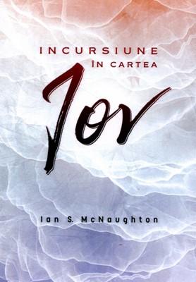 Incursiuni în cartea Iov
