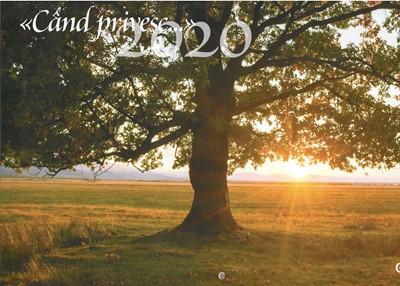 Calendar 2020 ... Cand privesc...