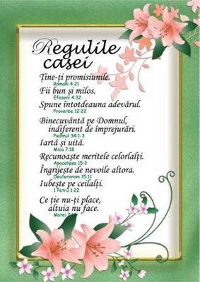 Poster Regulile casei A4