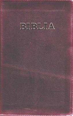 Biblia de studiu pentru copii