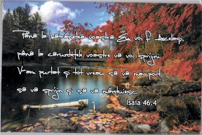 Tablou birou Is 46:4