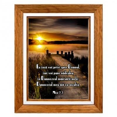 Tablou Mica 7:7