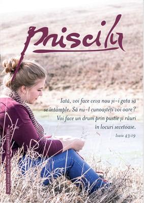 Revista Priscila, nr 45 / 2021