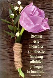 Carnet notiţe - Psalmul 103:8