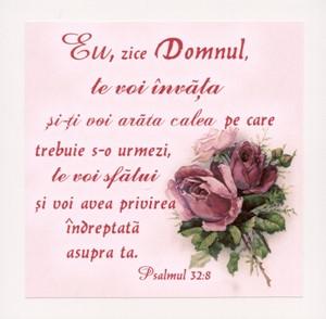 Tablou vintage - Psalmul 32:8