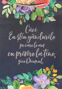 Pungă mică de cadou: Ier 29:11