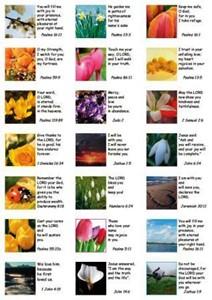 21 Versete autocolant engleza