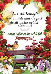 Poster A4 - Nu vă temeți